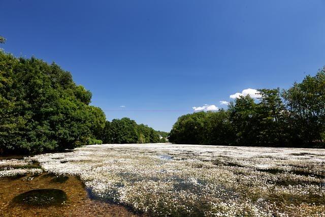 Loiret-2.jpg