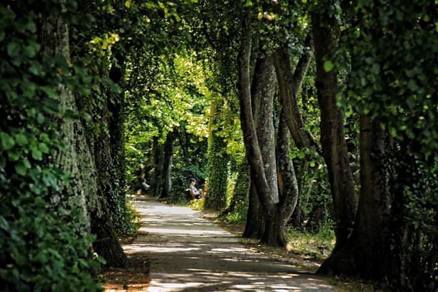 Loiret-31.jpg
